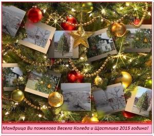 Весела Коледа и щастлива 2015 година
