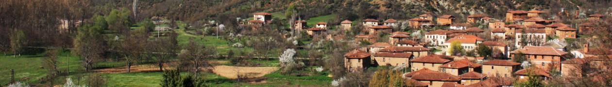 Добре дошли в село Мандрица